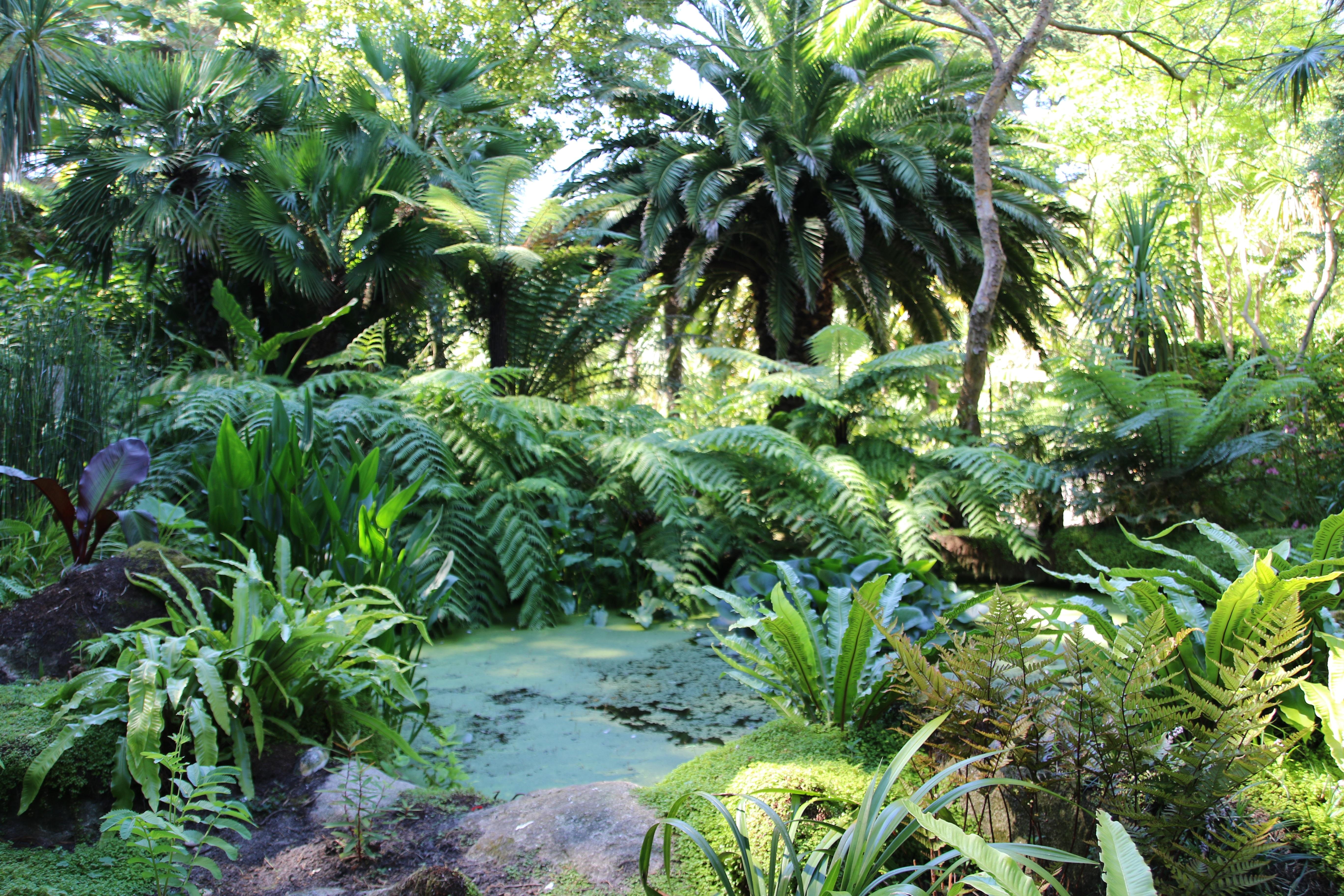 Visite de jardin par feng shui en finist re feng shui en for Vide jardin finistere 2016