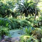eau_jardin_ile_de_batz