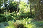 jardin_ile_de_batz